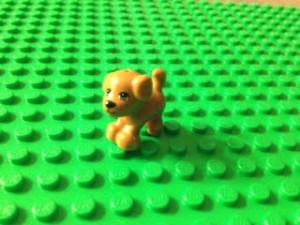 Lego_Jay