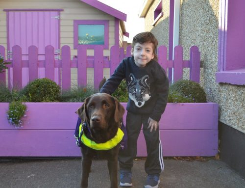 How our assistance dogs help these 19 children to walk independently