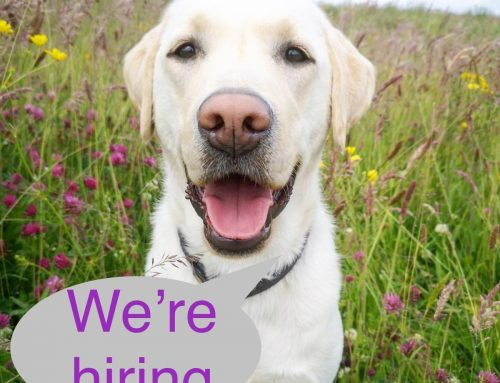 We are HIRING a General Office Administrator